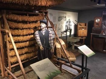 Samsun'da Tütün Müzelik Mi Oluyor?