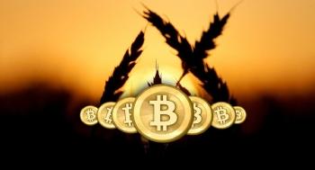 Rusya'dan Gelen Buğdayın Bedeli Bitcoin ile Ödendi